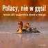 polacy-nie-w-gesi