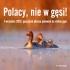polacy-nie-w-gesi_final