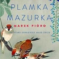 plamka_mazurka